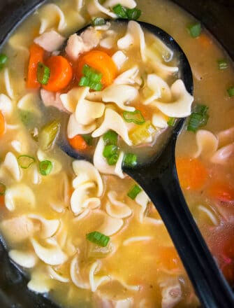 Easy Homemade Chicken Noodle Soup in Black Slow Cooker